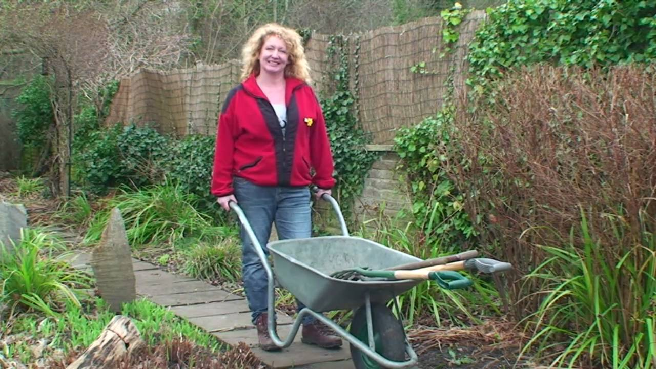 Herbacious Perennials   Charlie Dimmock   Gardening Direct   YouTube