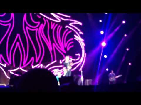 The Rolling Stones full HD Concert Tel Aviv 2014 אסף אריכא