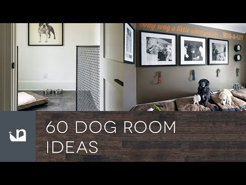 60 Dog Room Ideas