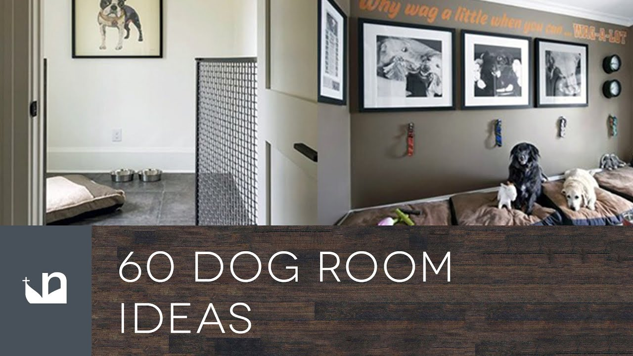60 Dog Room Ideas   YouTube