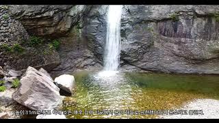 #58 달기폭포_매미 드론영상