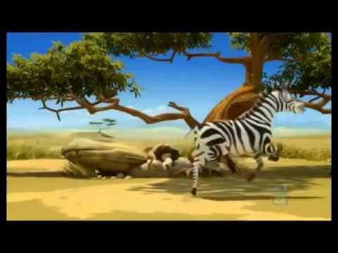 Зебра мультфильм смотреть