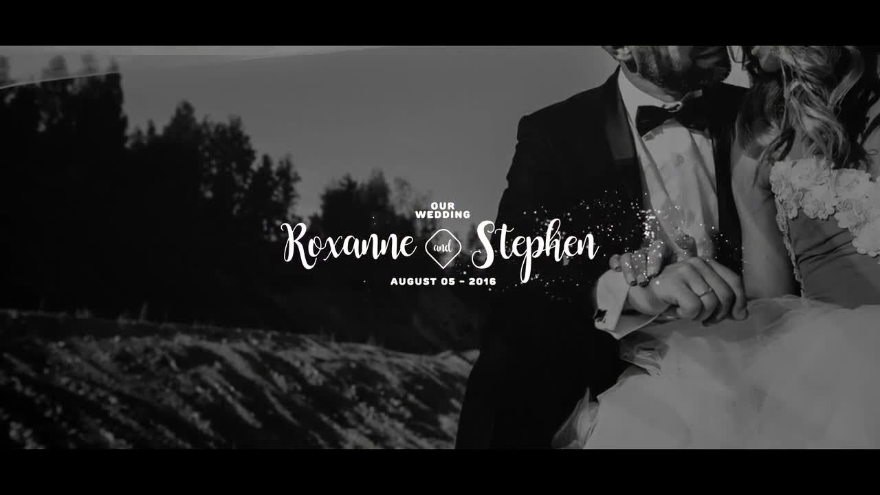 Premium Wedding Les After Effects Templates