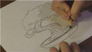 Nature Drawings : How to Draw a Bonsai Tree
