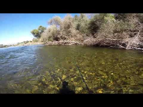 Fishing With The LTS Dynamic 5wt Fly Rod - Tuolumne River, 9/21/19
