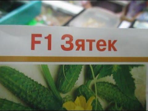 """""""Магазин, товары, обзор-5. Семена! Огурцы – ассортимент, цены, советы!"""""""