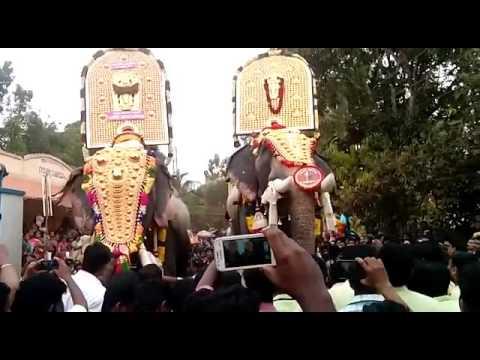 Anayadi pooram 2016 ( chirakkal kalidhasan, thrikkadavoor sivaraju)