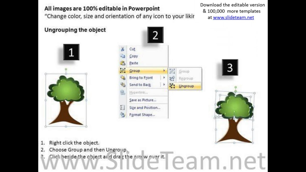Editable Family Tree Powerpoint Ppt Templates Youtube