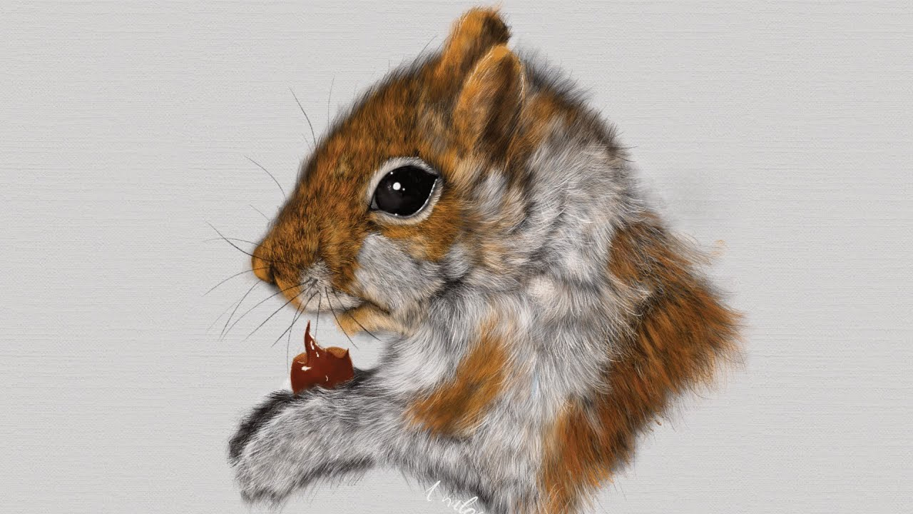 Uncategorized How To Draw A Realistic Squirrel ipad art how to draw a realistic squirrel on pro apple pencil procreate