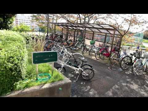Daruma#04 - Será que o último tour? Campus de Minoh