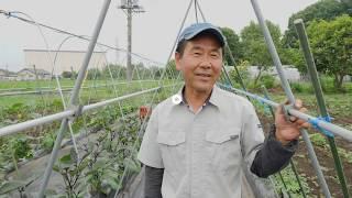 未来のために For the future 若いお母さんたちへ 有機農業『栃木県』