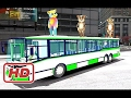 LEARN COLOR TALKING TOM ON BUS W CARS CARTOON FOR KIDS & COLORS FOR CHILDREN NURSERY RHYMES