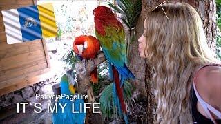 Ein Kuss im Tierpark | Gran Canaria Urlaub vlog 2018 - It's my life #1172 | PatrycjaPageLife