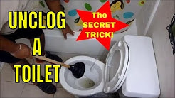 HOW TO UNCLOG A TOILET with a PLUNGER ..like a CHAMP!!!