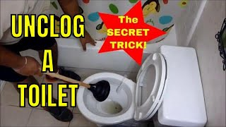 HOW TO UNCLOG A TOILET with a PLUNGER (How to Use a Plunger Like a Champ!)