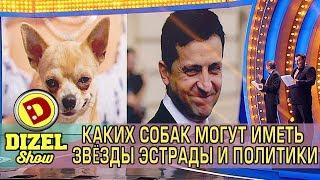 Каких собак могут иметь звёзды эстрады и политики? | Дизель cтудио