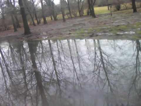 Kickapoo Creek at Bankfull