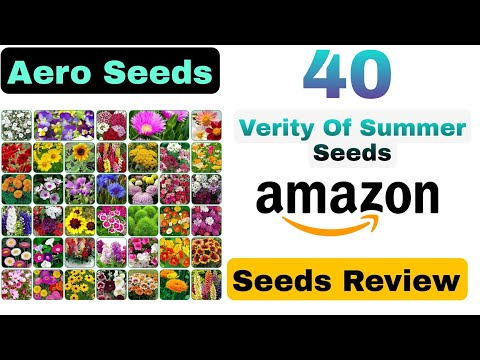 Buy Seed (5-10 rupees) Only Online Aero 40 Summer Flowers Seeds (PART 1) Unboxing And Quick Review