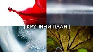 [ КРУПНЫЙ ПЛАН ] Мини Фильм :D