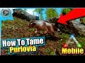 Ark Mobile| How To Tame A Purlovia Solo | iOS/Android Total Beginner's Guide