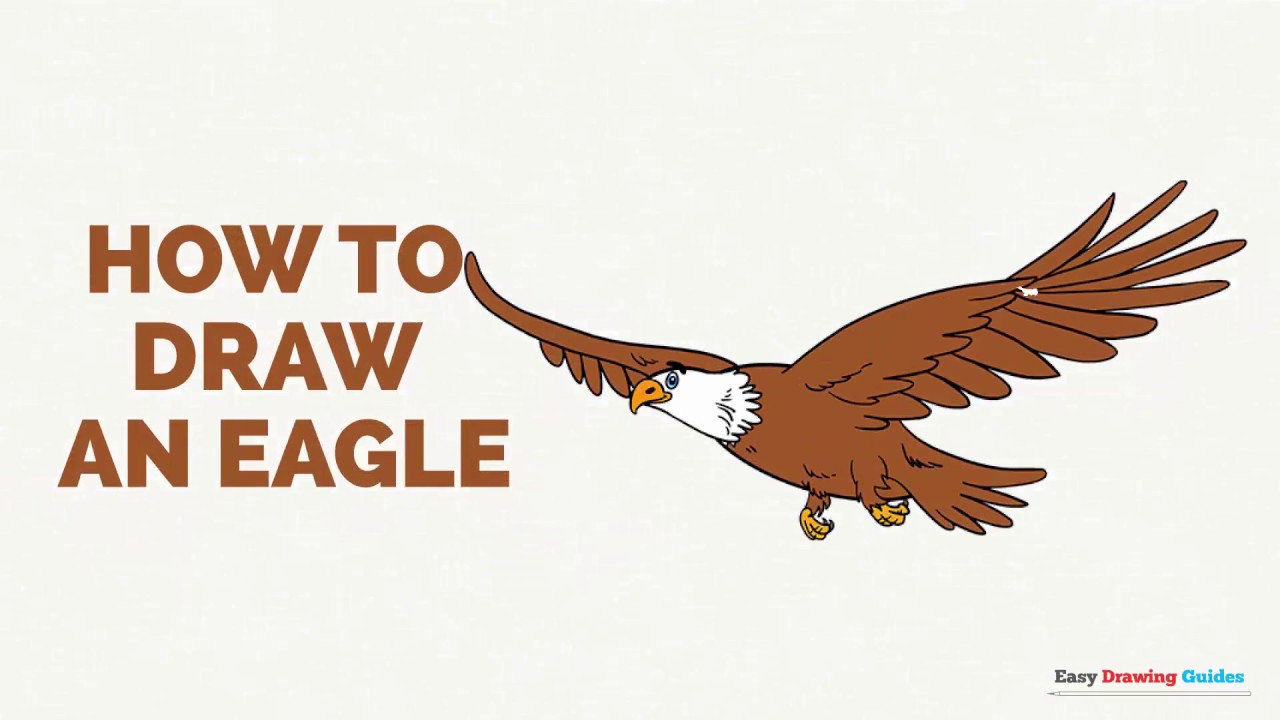 How to Draw an Eagle in a Few Easy Steps: Drawing Tutorial for Kids ...