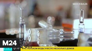Вакцинация против COVID-19 будет добровольной – Минздрав - Москва 24