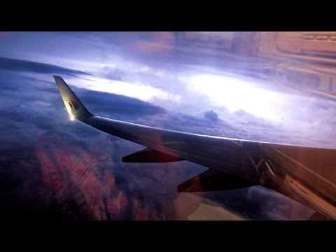 Malaysia Airlines Flight