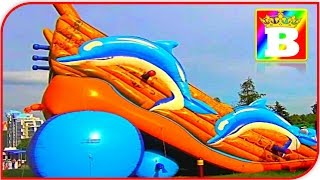 CRAZY kids on Dolphin Outdoor Playground.  Fun Family Play  Place for Kids.  Bogdan`s Show PLAY.