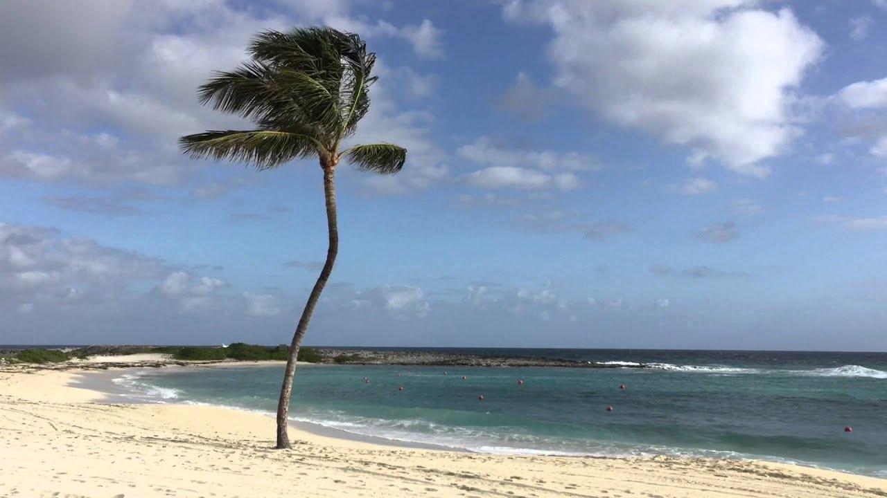 The Beach At Cove Atlantis Paradise Island