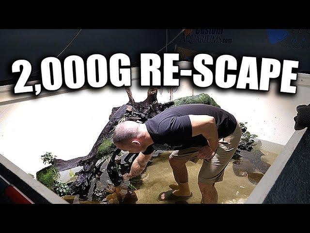 2-000g-aquarium-re-scape-begins