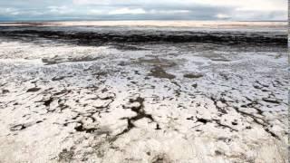 The SinTactics - NS Arktika