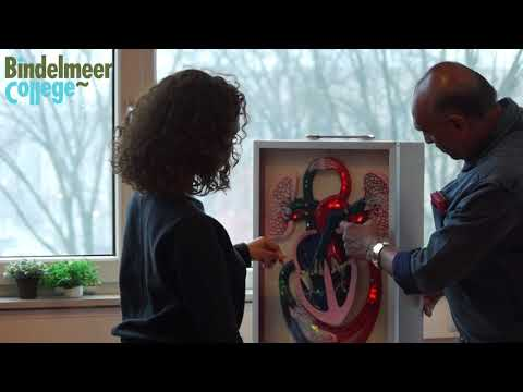 Bindelmeer College Promotie (trailer)