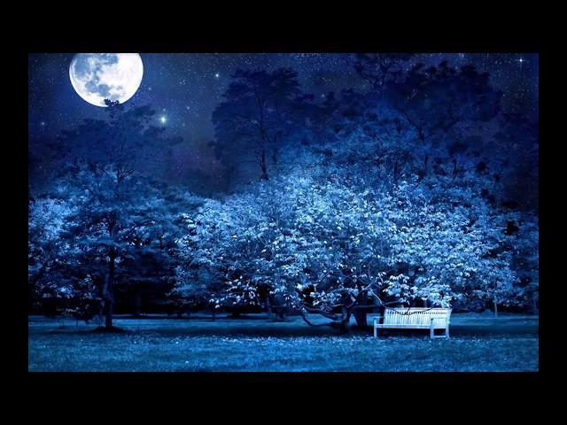 Изображение предпросмотра прочтения – ЛюбовьАдмаева читает произведение «Сияла ночь. Луной был полон сад...» А.А.Фета