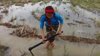 Amazing fishing at Battambang - people fishing in Cambodia - How to Catches fish (Part 50)
