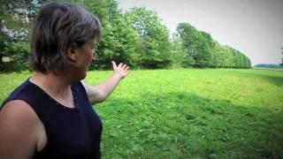 Capsule 10_L'importance des arbres sur une ferme