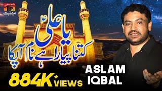 Ya Ali Kitna Pyara Hai Naam Apka   Aslam Iqbal   Tp Manqabat
