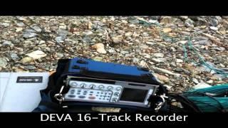 Halo: Fest -Halo 4 Audio Field Recording-