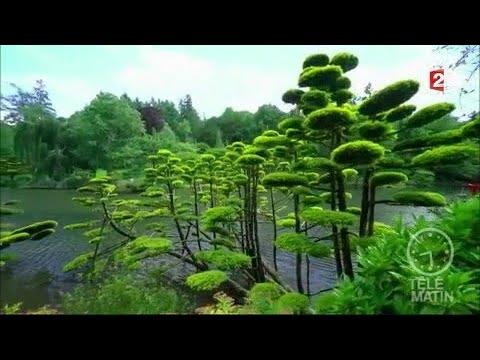 jardin au c ur d 39 un jardin japonais youtube. Black Bedroom Furniture Sets. Home Design Ideas
