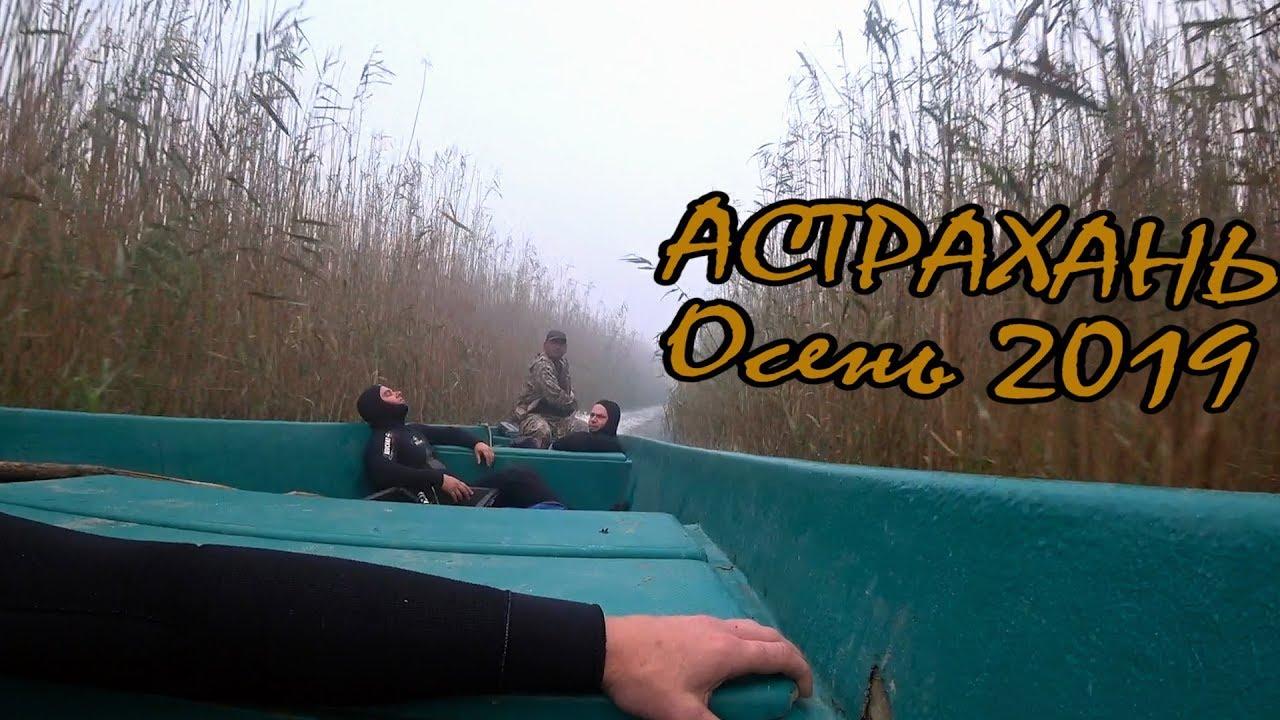 Подводная охота - Нижняя Волга. Сентябрь 2019. Сазан,Сом, Карась, Окунь.