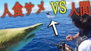 1万円の魚を餌に100kgの人食いサメ釣り![もりもりさん船釣り 2/3]