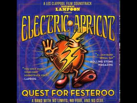 ELECTRIC APRICOT - Hey Are You Going To Burning Man?