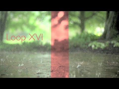 Speak Loud Advocate - Loop XVI