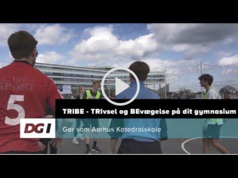 TRIBE - trivsel og bevægelse på dit gymnasium