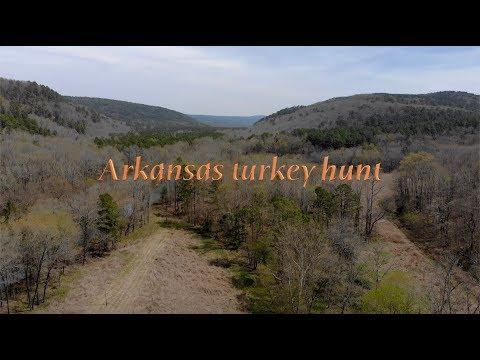 Arkansas Public Land Turkey Hunt