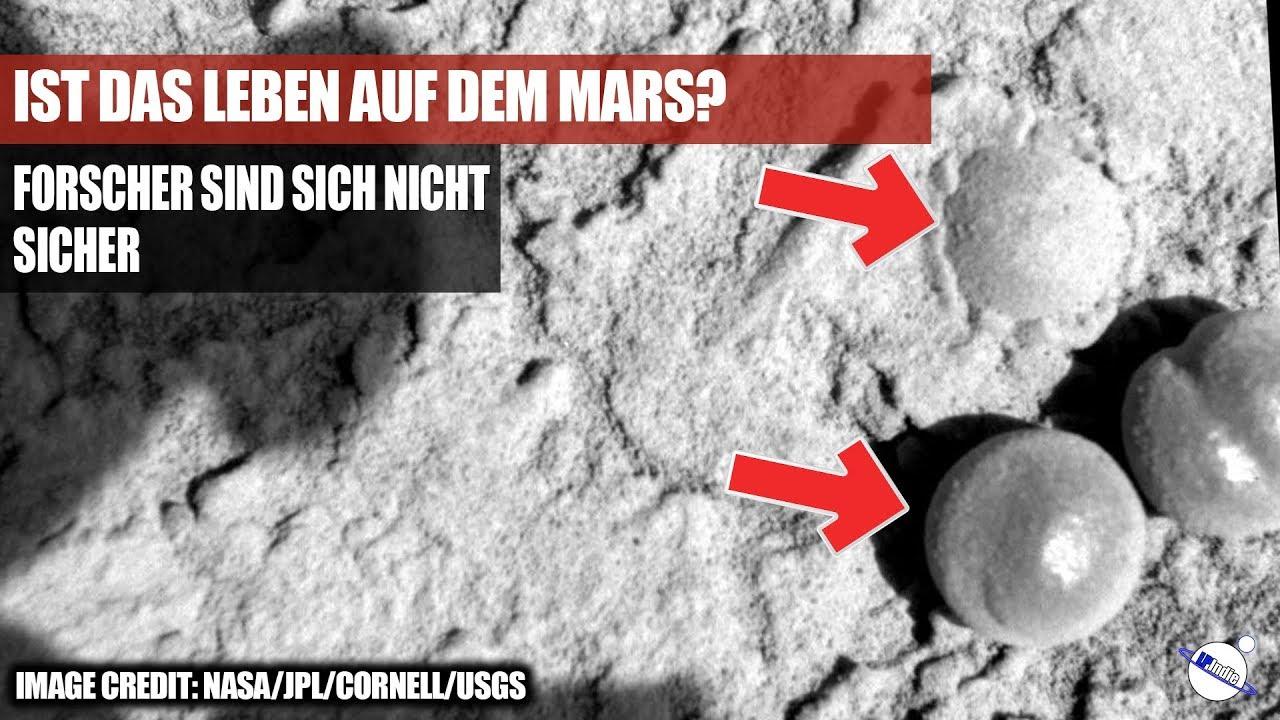 Ist das Leben auf dem Mars? - Forscher sind sich nicht sicher