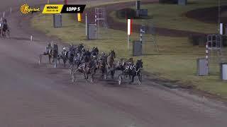 Vidéo de la course PMU PRIX COURSE 5
