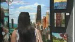 WGN Radio - CityCam Chicago Tribune Mag Mile Art Festival