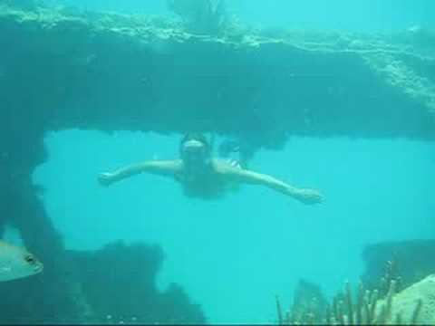 ReefView Snorkeling Adventures: Snorkeling Shipwrecks in Antigua - Wreck of the Andes.
