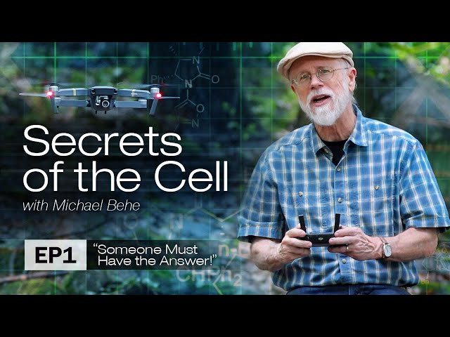 Someone Must Have the Answer! (Secrets of the Cell with Michael Behe, Ep. 1)