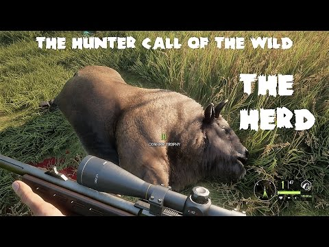 theHunter - Call of the wild - The Herd